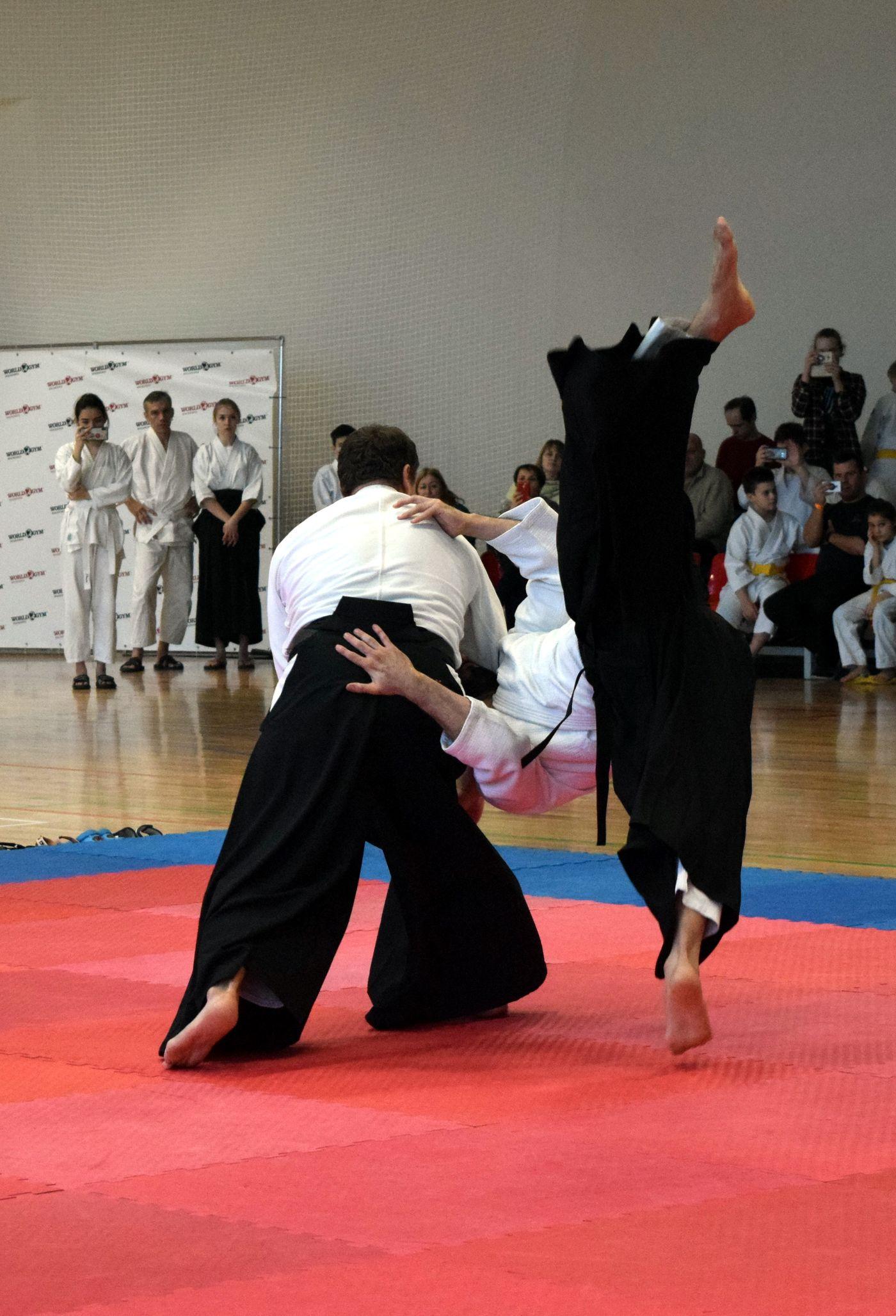 IV Открытый Фестиваль Межрегиональной федерации айкидо